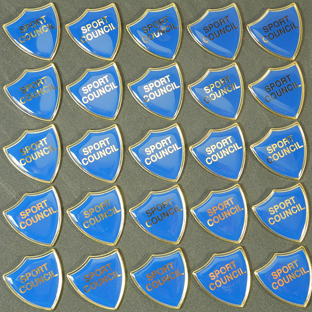 Clearance Bulk Blue Sport Council Badges
