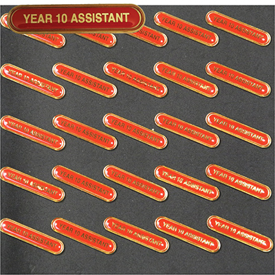 Clearance Bulk Red Year 10 Assistant Bar Badges